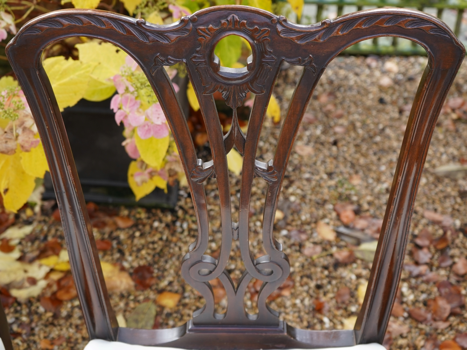 A Fine set of 8 Mahogany Dining Chairs Chippendale style Antique